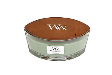 Duftlys Ellipse White Willow Moss Grønn