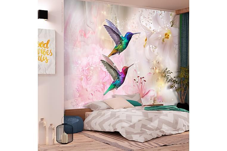 Fototapet Colourful Hummingbirds Pink 100x70 - Finnes i flere størrelser - Innredning - Tapeter - Fototapeter