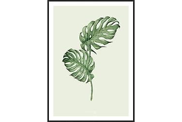 Bilde Leaf green 50x70 cm