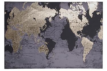 Bilde Verden Blad