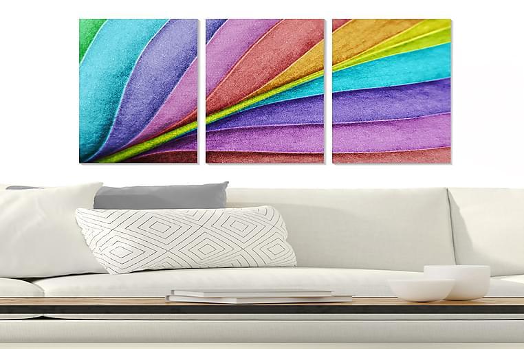 Canvasbilde Floral 3-pk flerfarget - 22x05 cm - Innredning - Veggdekorasjon - Posters